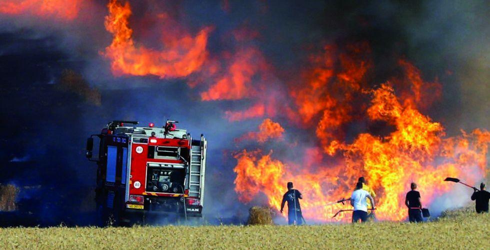 توجه لتعويض المتضررين من حوادث حرق المحاصيل الزراعية