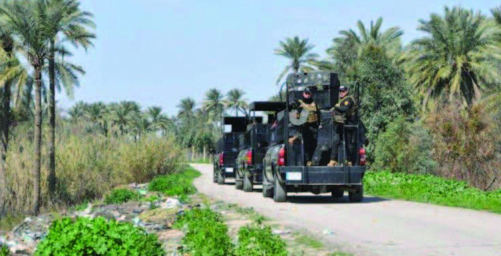 القوات الأمنية تؤمّن المدن والقرى المحررة في ديالى