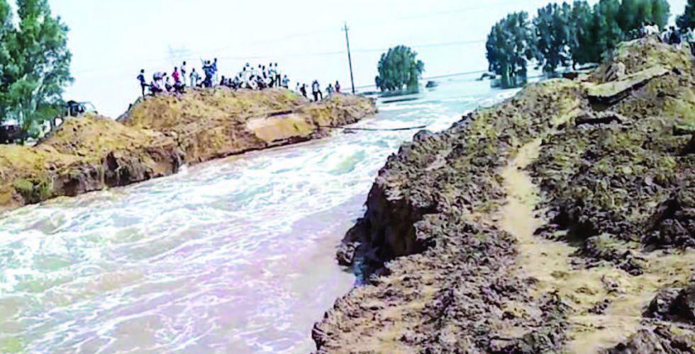 مياه الأمطار.. خزين ستراتيجي لانعاش الأهوار وازدهار الزراعة