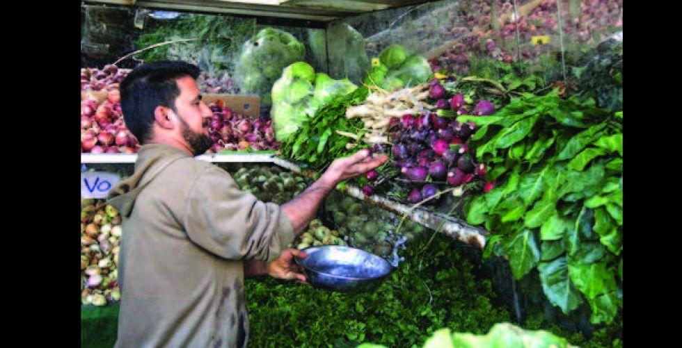 الزراعة: إغلاق الحدود لن يؤثر في توفير المنتجات