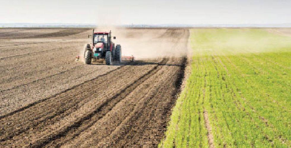 وزير الزراعة: لن نغلق الباب أمام المستوردين والمستثمرين