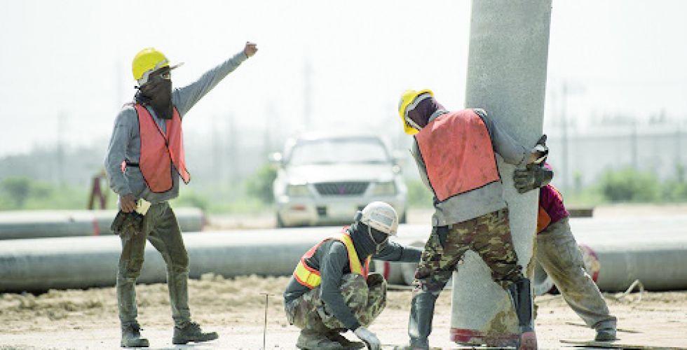 أفكار لامتصاص البطالة