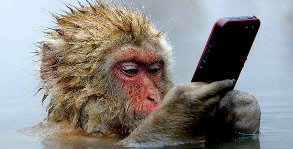 شاب ماليزي يفاجأ بـ «سيلفي» لسارق هاتفه