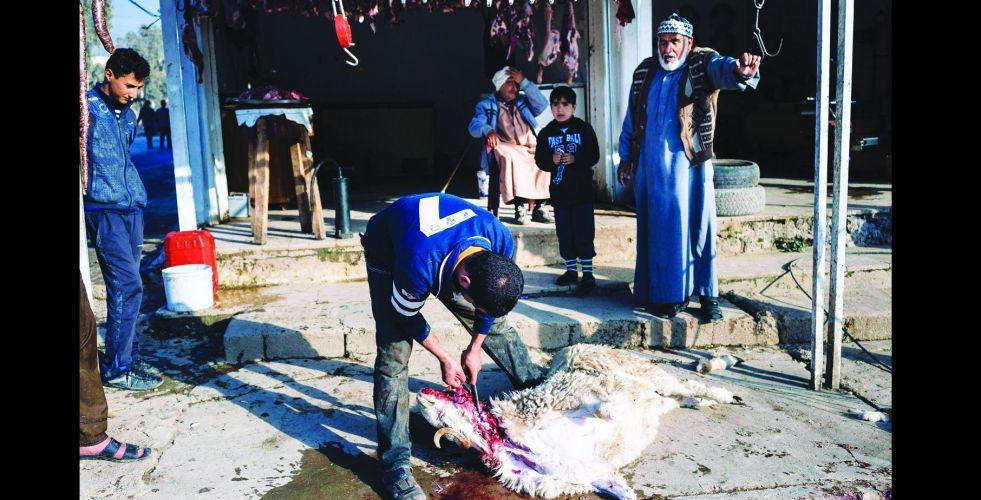 الذبح العشوائي للمواشي.. تلوث مستمر  يهدد حياة المواطنين