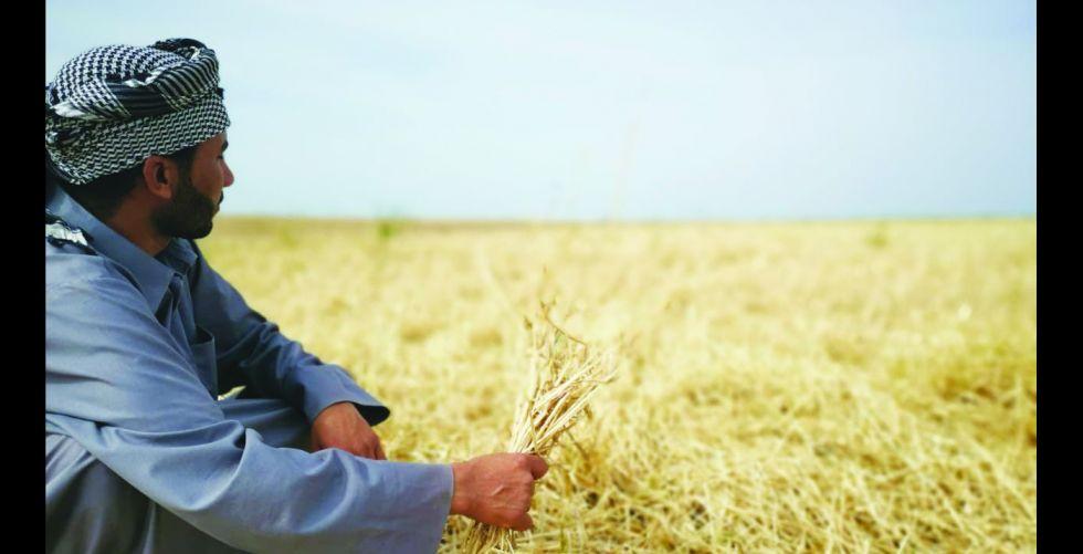 برامج وطنيَّة لتطوير وزيادة الإنتاج الحيواني والنباتي