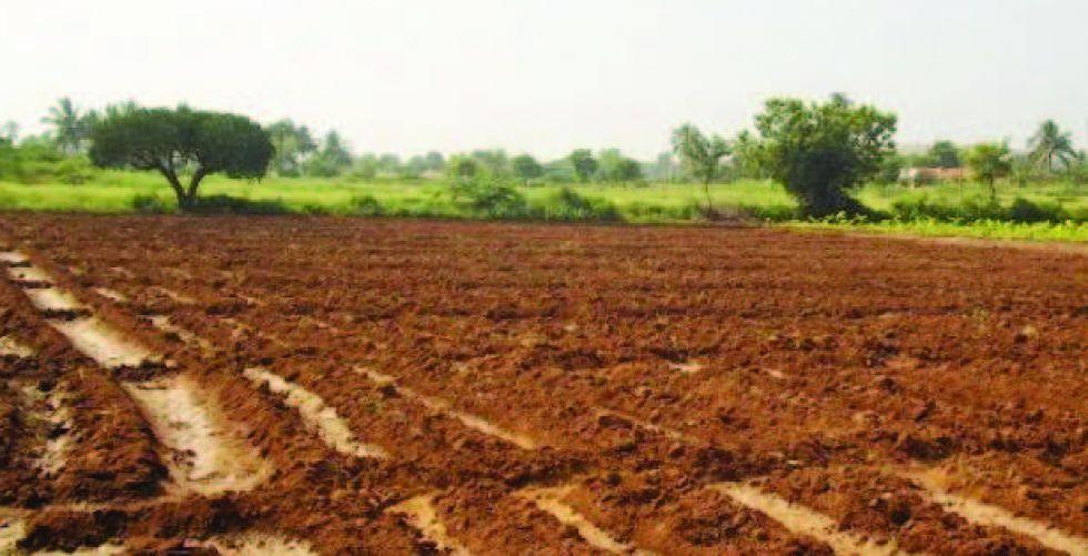 وزارة الزراعة: شركات صينيَّة ترغب بالاستثمار في العراق