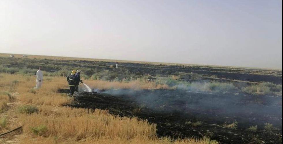 حريق كبير يلتهم حقول الحنطة في النجف