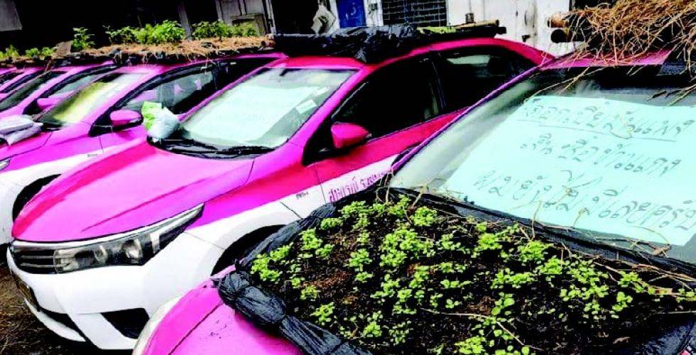 سيارات أجرة تتحول إلى حدائق
