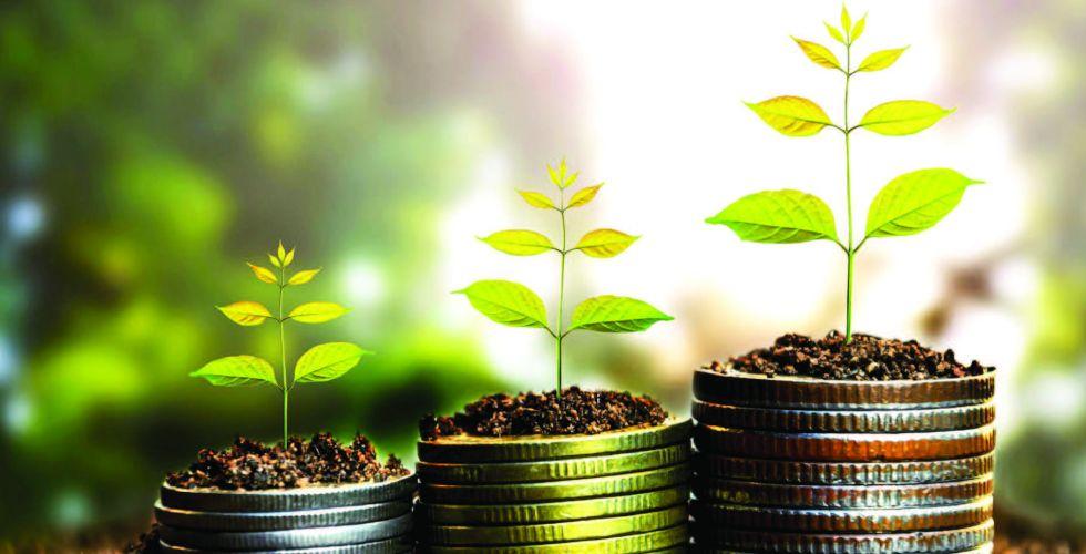 مجالاته متعددة ومتجددة .. المرأة تشق طريقها نحو الاستثمار المستدام