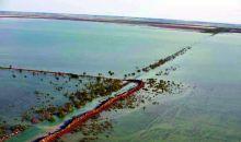 البرلمان يصوّت على تعويض المتضررين من السيول والفيضانات