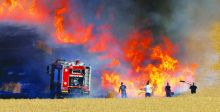 حكماء سنجار: حرق المحاصيل ينذر بتهديد السلم المجتمعي