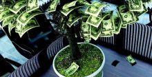 نصائح لتمويل المشاريع عن طريق «رأس المال الجريء»