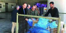 البريد تخفض تكاليف نقل الطرود الى خارج العراق
