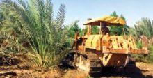 مجلس بغداد: إجراءات للحفاظ  على الأراضي الزراعية ومنع تجريفها