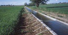 كفاءة استخدام المياه في الزراعة تحققُ تنمية مستدامة