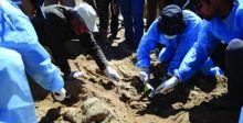 العثور على مقبرة جماعية في النجف الأشرف