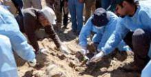 العثور على 10 مقابر جماعية في بادية السماوة