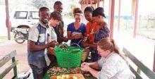 زراعة الأناناس تشجع شباب غينيا على البقاء