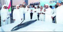 بيع أغلى سمكة بالعالم في أبو ظبي