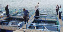 الحاجة الى برامج لتنمية الثروة السمكيَّة