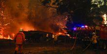 كارثة بيئية غير مسبوقة في أستراليا