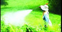 لوكسمبورغ.. أولُ دولة أوروبيَّة تحظر المبيدات الكيمياويَّة