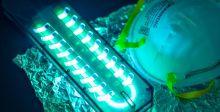 الأشعة فوق البنفسجيَّة قد تقتل فيروس «كورونا»