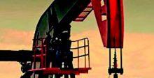 كندا: خطط إعادة فتح الاقتصاد ليست مرتبطة بالمناعة من كورونا