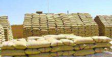 تسويق أكثر من 165 ألف طن من الحنطة في 3 محافظات