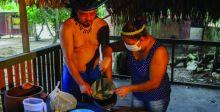 البرازيليون الأصليون يواجهون {كورونا» بالأعشاب