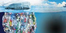 النفايات البلاستيكيَّة.. دورة حياة جديدة