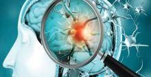 دراسة: كورونا قادر على مهاجمة الدماغ