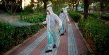 تفشي فيروس غرب النيل القاتل في إسبانيا