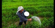 مزارعو المثنى: الموسم الصيفي مهدد بالانهيار