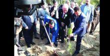 غابات الموصل تعود للحياة مجدداً