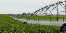 الموارد المائية تخفض حصة بابل في الموسم الزراعي الشتوي إلى ٥٠%