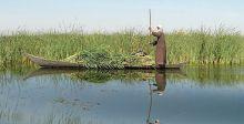 الموارد المائيَّة توضح الإجراءات المتّخذة بشأن تأمين المياه للأهوار