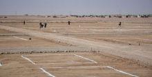 بلديَّة الموصل: 500 قطعة  أرض لـ 3 شرائح